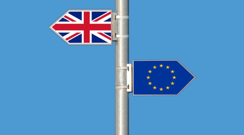 brexit, elena blum