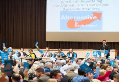L'AfD, le renouveau de l'extrême droite allemande sur fond de division