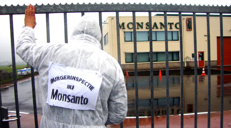 Monsanto, Round up, glyphosate, Elena Blum
